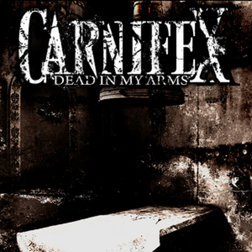 Lie to my Face (Carnifex guitar cover)