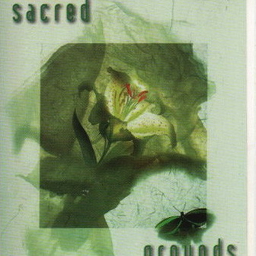 Steve Loria Live at Sacred Grounds Los Angeles on February 22 1997