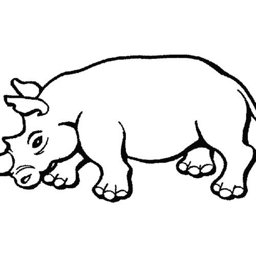 White Rhino Remix