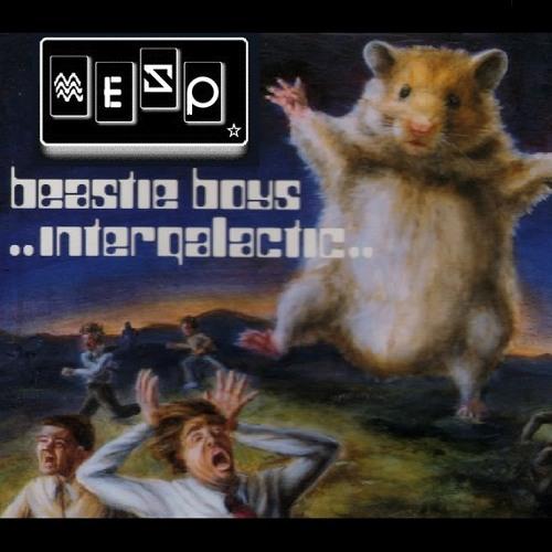 IN 2 M.E.S.P.  - INTERGALACTIC - Beastie Boys - Prod. Fuso & M.E.S.P.