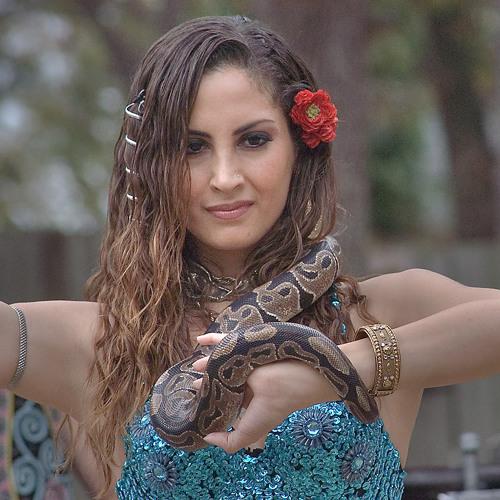 The Gypsy's Python (Feat Elaine Sharp)