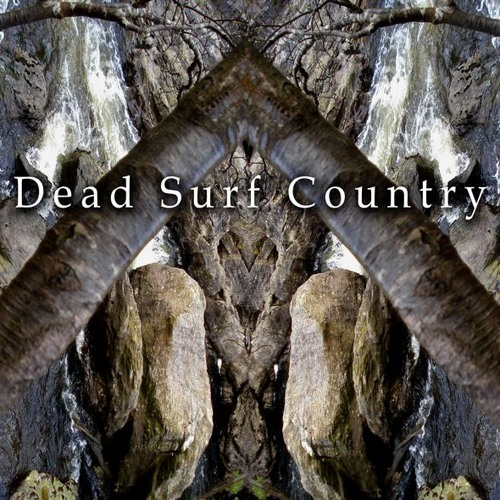 White Cave Receiver by Dead Surf Country
