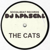 DJ A*PASCAL aka Mista Pee - The cats
