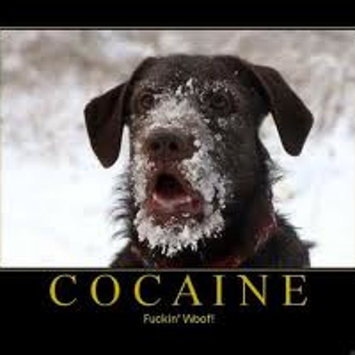 Afghan Headspin - Cocaine (Physical Bross Remix) FREE DOWNLOAD