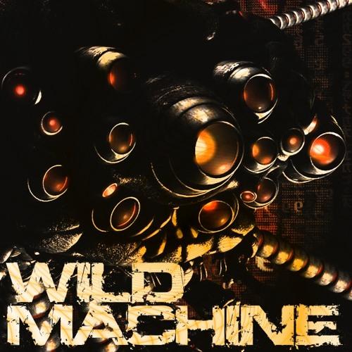 WILD MACHINE (original mix - preview)