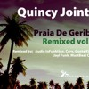 Quincy Jointz - Chicago - Audio InFunktion Remix
