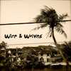 the-warmth-of-sun-wire-wolves