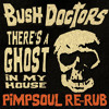 Bush Doctors - Ghost In My House (Pimpsouls'