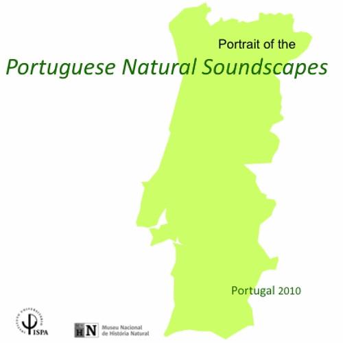 Portuguese Natural Soundscapes Project, Castro Verde, Spring 2011