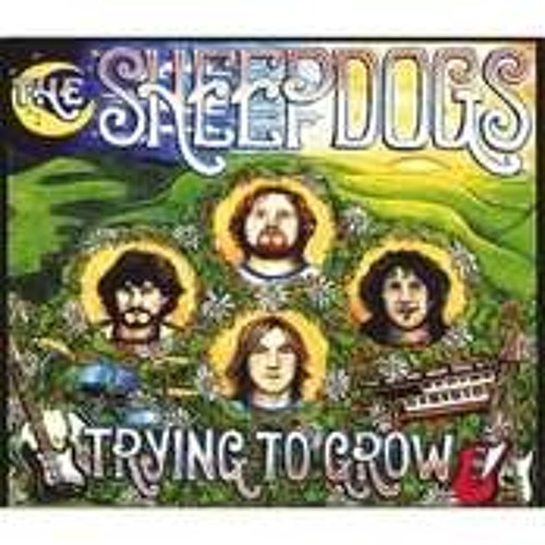 Hang Onto Yourself -The Sheepdogs
