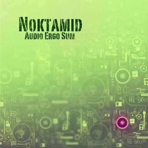 Noktamid - Writing All Wrongs