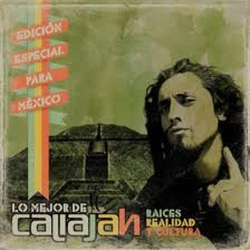 Melodia cogoyo - Caliajah