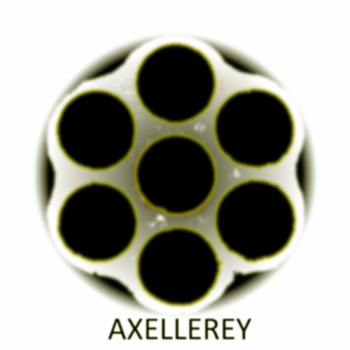 Axellerey - Hold your breath