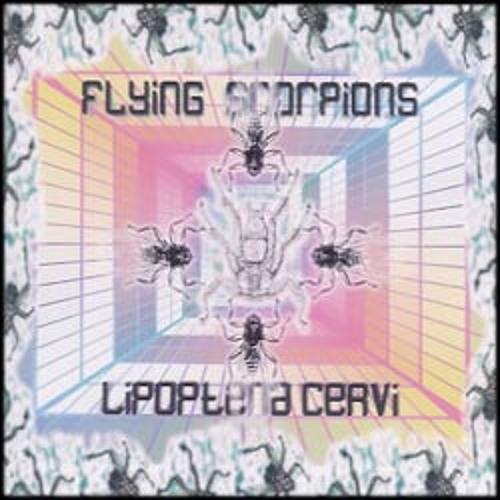 01 Flying Scorpions _Avari (Raivovajari mix)