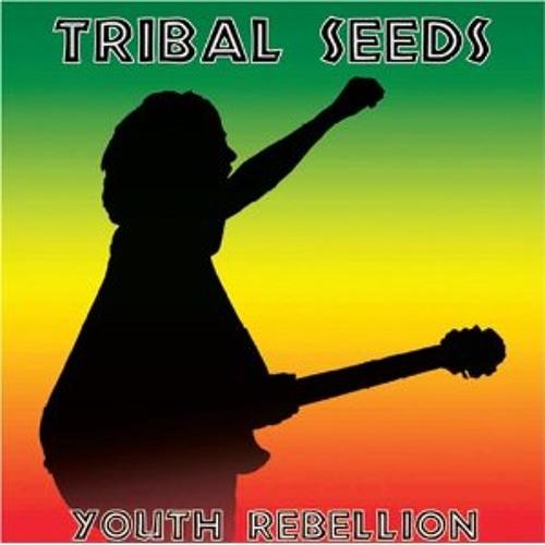 Youth Rebellion (DUB)