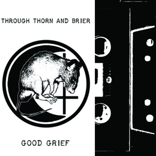 Through Thorn And Brier - The Sorry Flesh