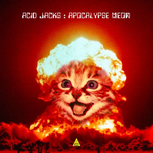 Acid Jacks - Apocalypse Meow - Track 08. Voyager (Original Mix)