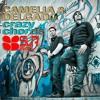 Camelia & Delgado - Crazy Chords