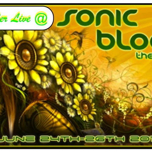 Live @ SonicBloom 2011