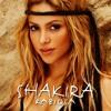 Shakira ft. Pitbull - Rabiosa(Reigar remix)