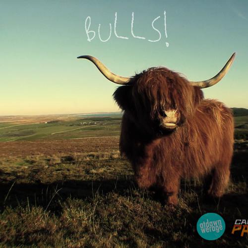 At Dawn We Rage & Captain Panic - Bulls! (Original Mix)