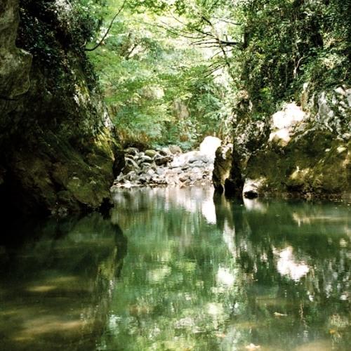 Soundscape, forest, Rječina