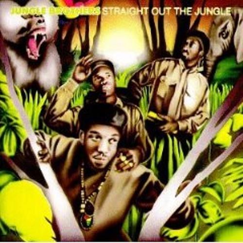 Jungle brothers vs peacemakers (herma reblend)