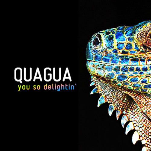 Quagua - you so delightin' (kian84 mix) reupload