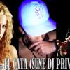Shakira ft El Cata - Rabiosa (Sune DJ Private Remix)