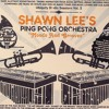 Shawn Lee's Ping Pong Orchestra - Moods and Grooves -Indian Summer