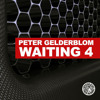 Peter Gelderblom - Waiting 4 (DJ Alberto Remix)