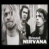 Nirvana - Breed (COVER) - Free Download