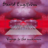 David Engström feat. Östias Toblund & Björn J:son Lindh - Stay in your dream (D'stream remix)