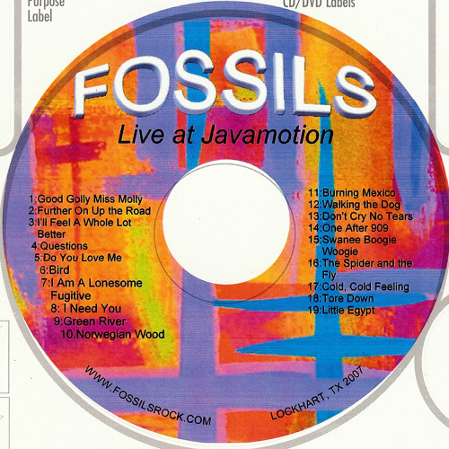 The Fossils, Live At Javamotion