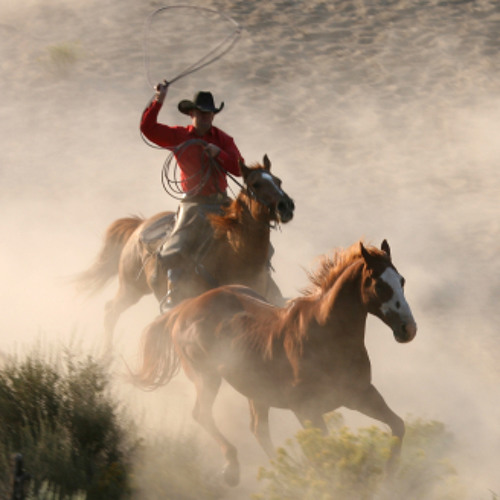 Cowboy // PaulaDaunt
