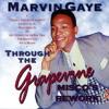 Marvin Gaye-Through The Grapevine (Misco's Rework)