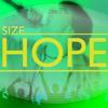 Size - Vanidad(Mash up 3HO!3)