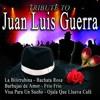Covers like Juan Luis Guerra - Estrellitas y duendes Portada del disco