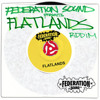 FLAT IS.LAND poblasoundremix