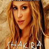 Shakira feat. Pitbull - Rabiosa Dj Moyo (Nexus Mix)