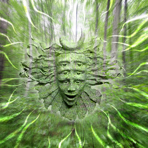Shpongle - Once Upon The Sea Of Blissful Awareness Esionjim Remix (drum and bass edition)