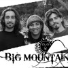 BABY STAY - Big Mountain - Rebel Ink / Groove Galore