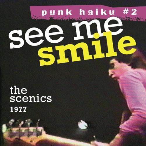 See Me Smile (Punk Haiku 2) 1977 protopunk