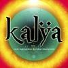 Nick Kamarera & Mike Diamondz - Kalya ( Andeeno Damassy Remix)