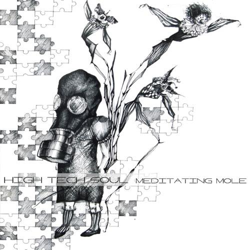 High Tech Soul - Meditating Mole (Simuck Remix)