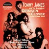Crimson and Clover (cover Tommy James & the Shondells)