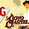 Goyo Gastelum Mix-DJ David(Viernes En La Iguana Dicoteque) Portada del disco