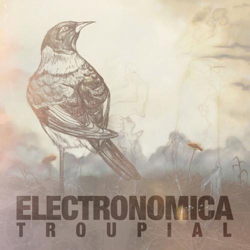 Electronomica - Troupial