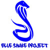 Blue Snake Project - Partyway
