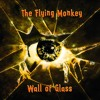 Wall of Glass (Noisy Version) -- rec. by Maunz